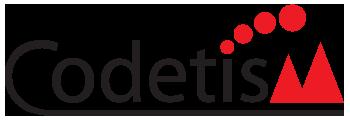 codetism logo
